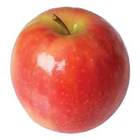 Apples, Gala/Fuji Variety (1/2 cup, 198 ct/cs)