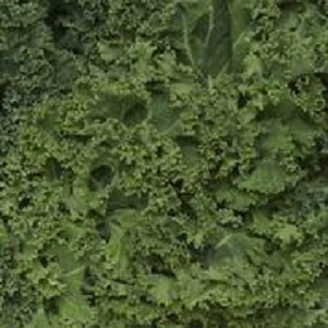 Kale, Green Cello Pk (4 X 2.5 lb Bags)